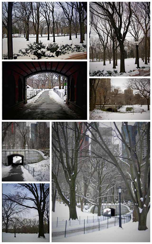 central-park-collage