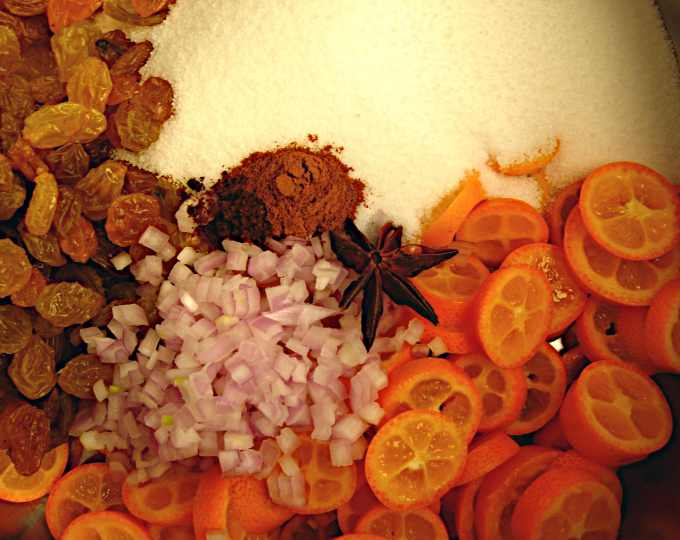 kumquat-chutney-ingredients